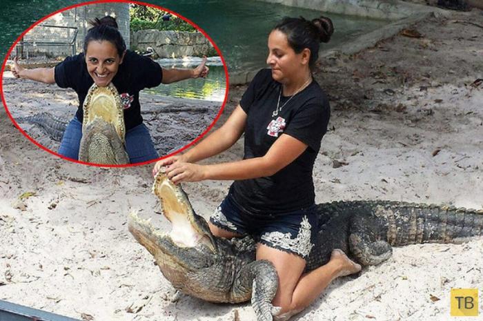 Беременная женщина из Флориды участвует в схватках с аллигаторами (8 фото)