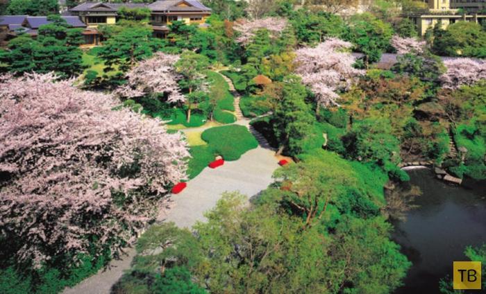 Прекрасные японские сады (14 фото)