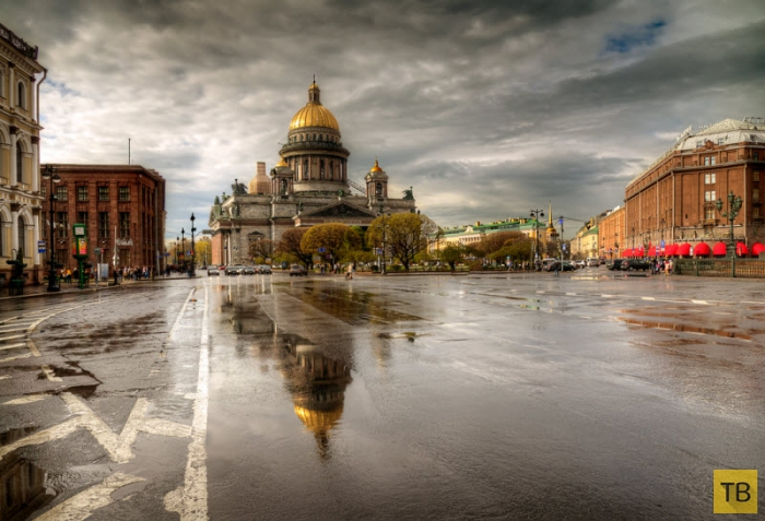 Дождливые городские пейзажи (20 фото)