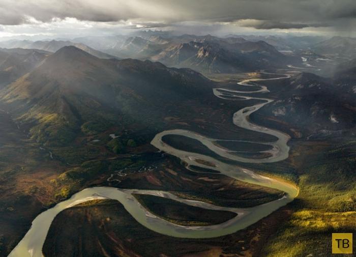 Дикая природа Аляски (12 фото)