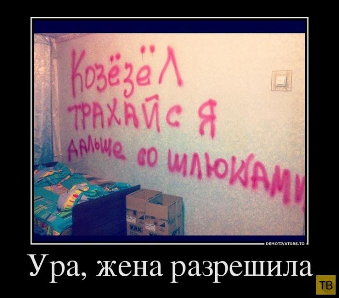 Подборка демотиваторов 14. 11. 2014 (41 фото)