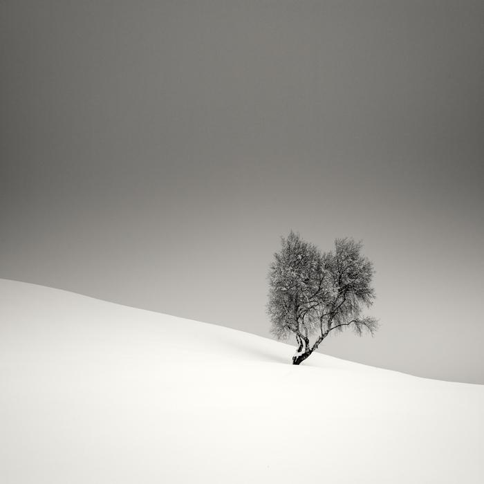 Удивительные пейзажи от Pierre Pellegrini