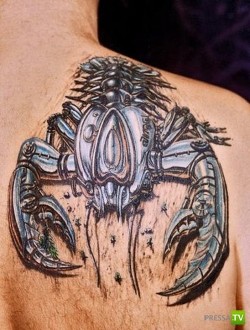 Необычные 3D татуировки (26 фото)