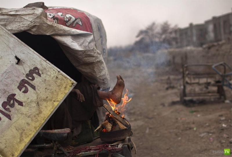 Лучшие фотографии ноября по версии Reuters (17 фото)