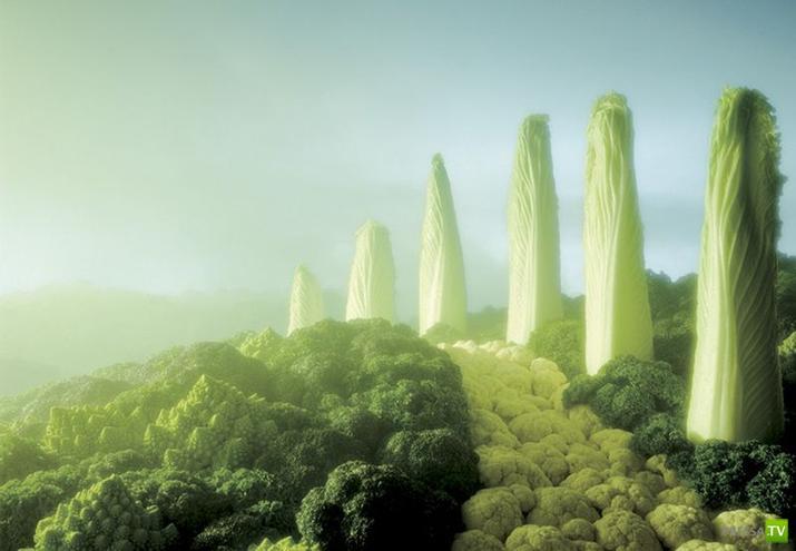 Съедобные пейзажи от фотографа Hartmut Seehuber (9 фото)