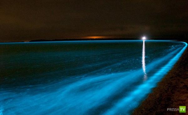 Светящиеся озера Австралии (7 фото)
