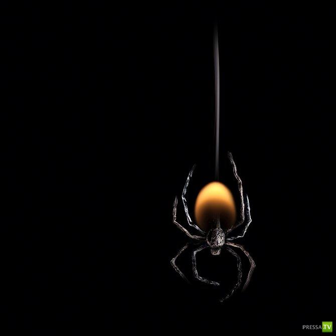 Искусство из горящих спичек (23 фото)