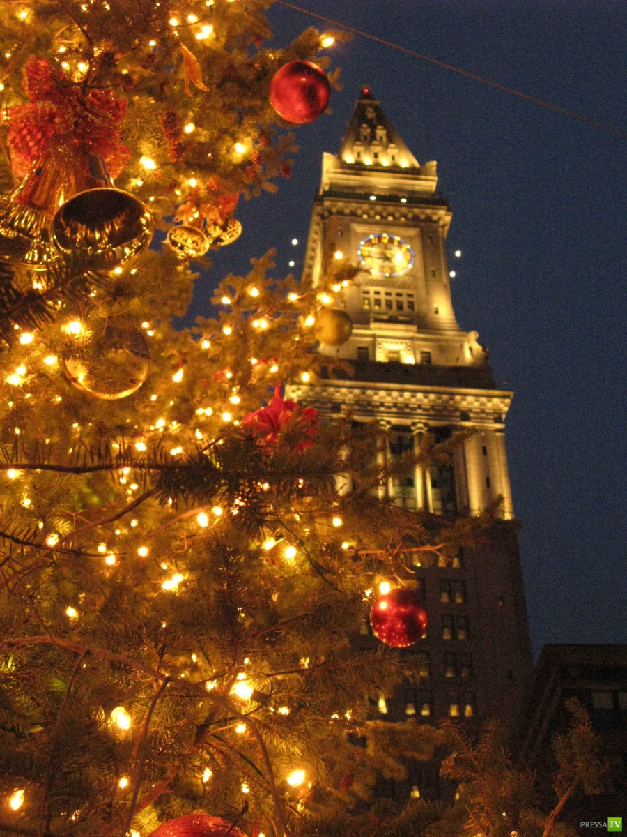 Поднимаем новогоднее настроение (31 фото)