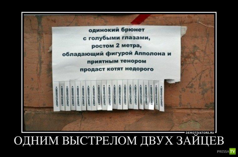 Подборка демотиваторов на понедельник (11 фото)