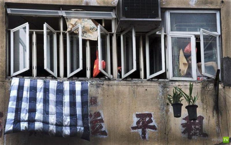 Жизнь в клетке Гонк Конг (13 фото)