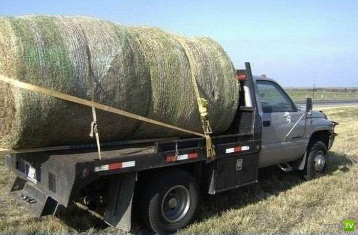 Самый дорогой в мире стог сена (4 фото)