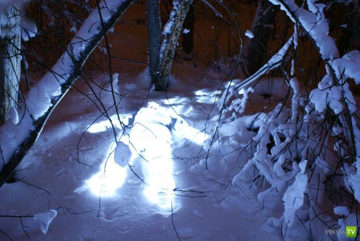 Картины светом от Janne Parviainen (23 фото)