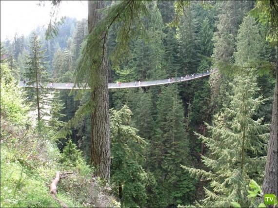 Подвесной мост Капилано (5 фото)