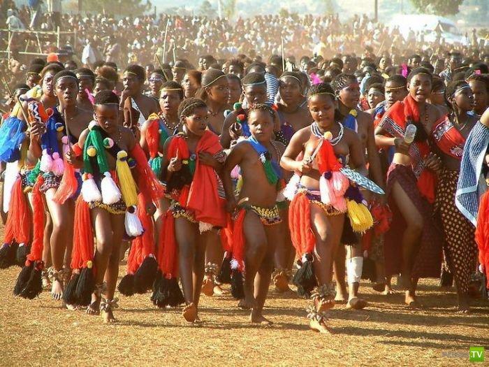 60 тысяч девственниц для короля Свазиленда (20 фото)