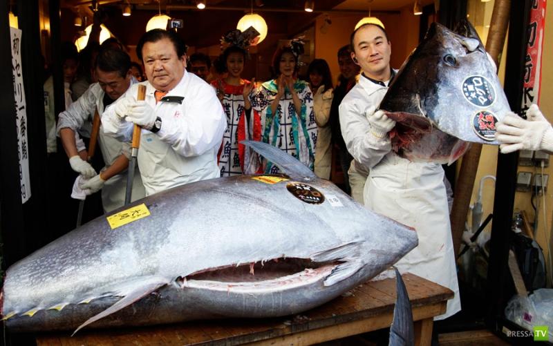 Рыбный рынок в Японии