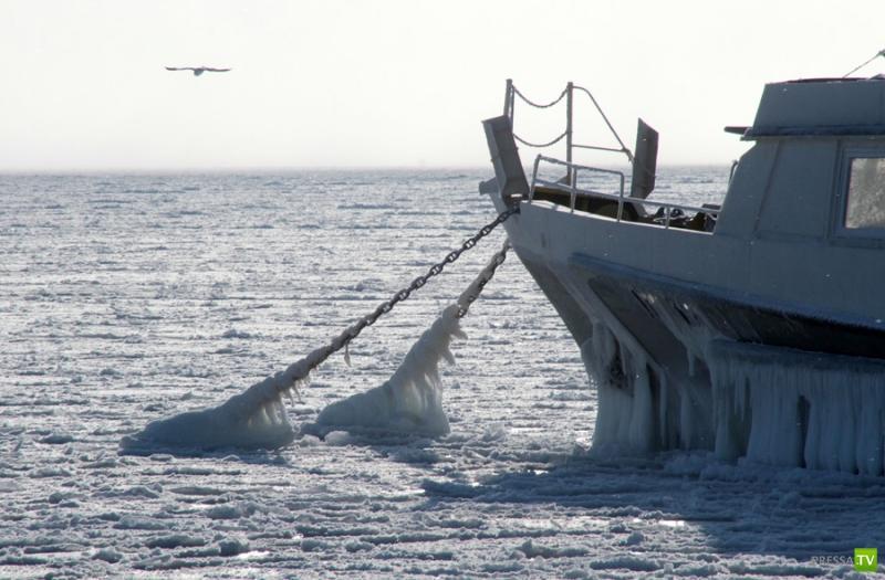 Черное море замерзло впервые за 30 лет ...