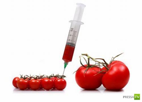 Геномодифицированные Продукты... За или против?