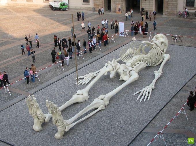 Гигантский путешествующий скелет