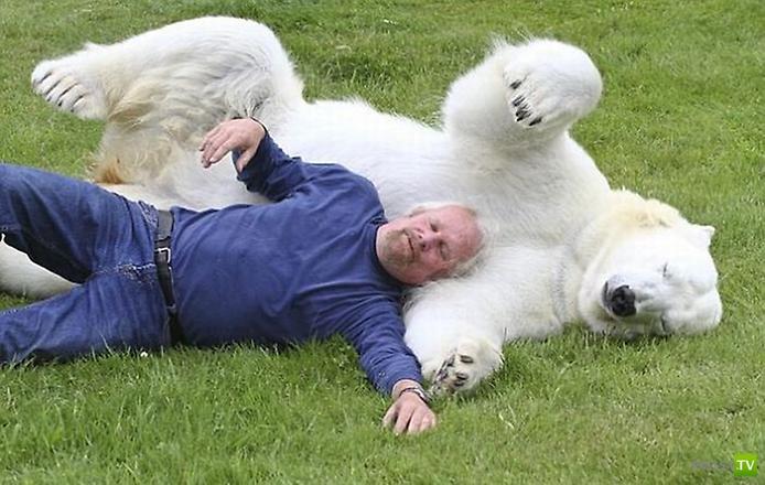 Марк Думас и его полярный друг ...
