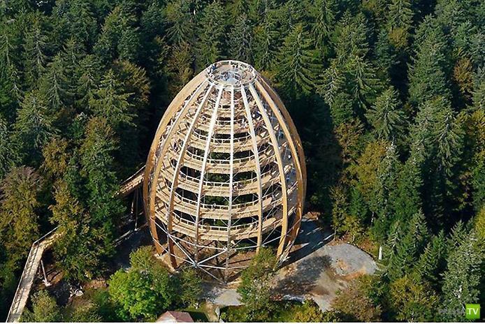 Необычная дорога в Баварии... Гуляем по макушкам деревьев
