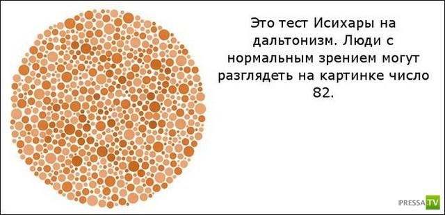 Классные оптические иллюзии