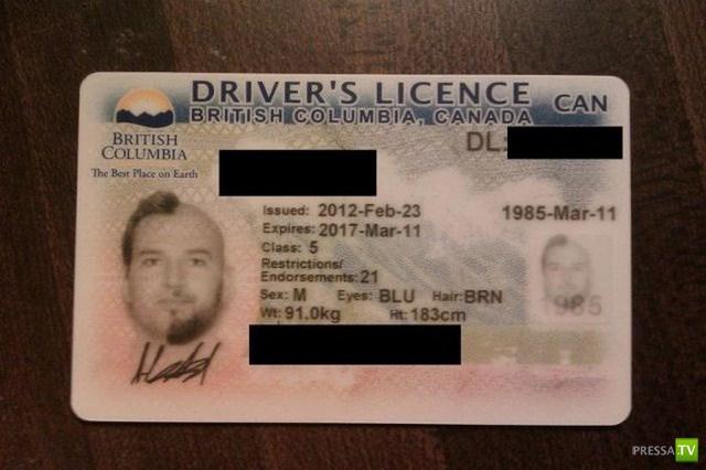 Необычное водительское удостоверение (9 фото)