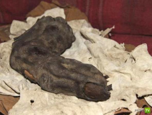 Настоящий палец великана из Египта (4 фото)