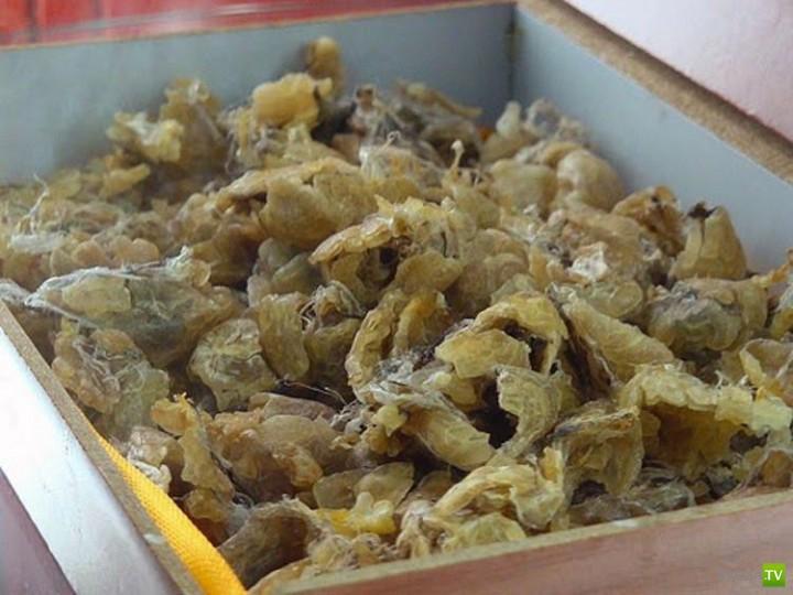 Самые отвратительные и ужасные блюда... (9 фото)