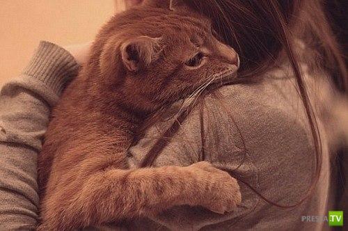 Любимые зверюшки. Никому тебя не отдам!!! (35 фото)
