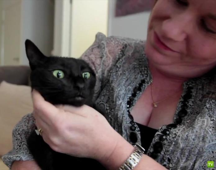 Кот спас свою подругу из стиральной машины (5 фото + видео)