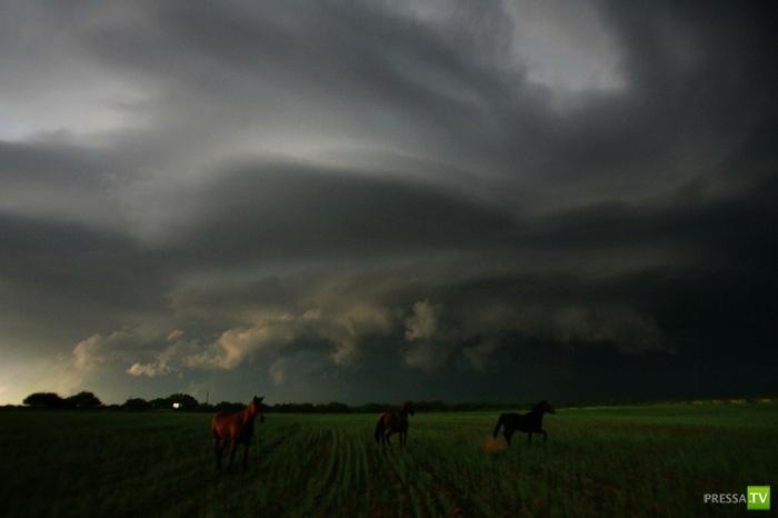 Удивительные фотографии бурь Ника Мойра (33 фото)