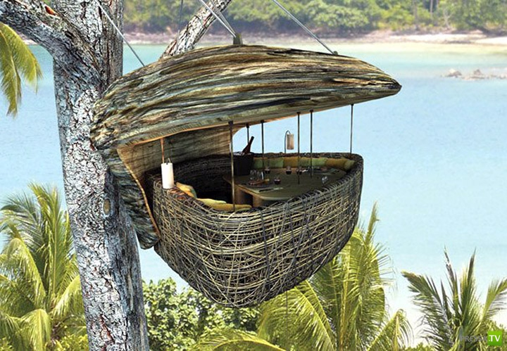 Ресторан на дереве в Таиланде (8 фото)