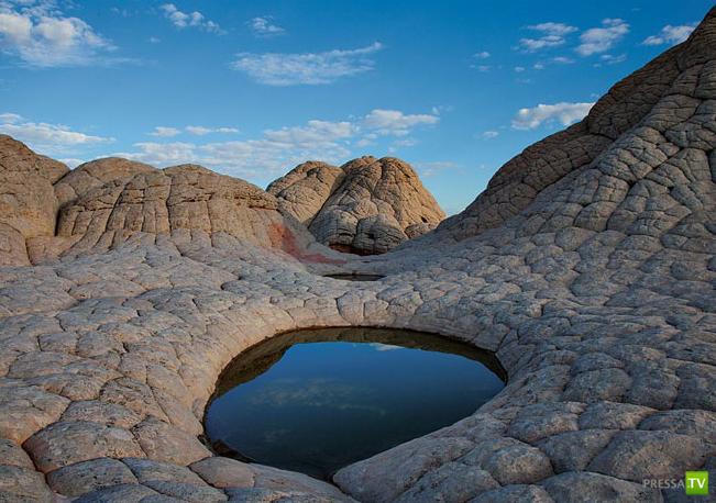 Лучшие фотографии марта 2012 от National Geographic ... (31 фото)