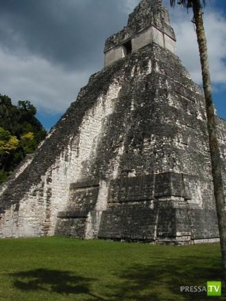 Тикаль - крупнейший город Майя ... (12 фото)
