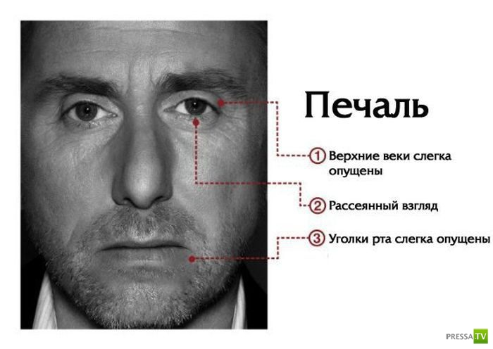 О чем говорит мимика лица (7 фото)