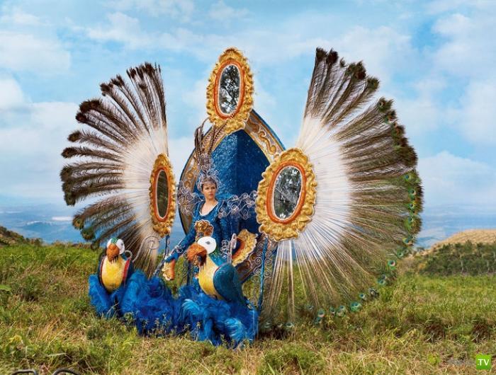 В солнечной Бразилии, Бразилии моей, такое изобилие невиданных зверей (8 фото)