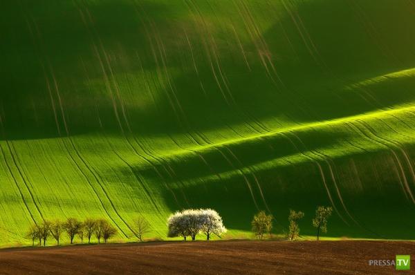 Необыкновенные пейзажи (28 фото)