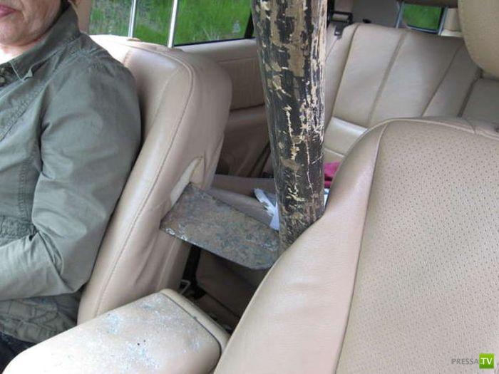 Кирка влетела в салон автомобиля (8 фото)