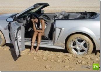 Отличия женского и мужского стилей вождения ... (21 фото)