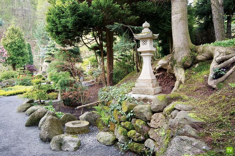 Настоящий японский сад в польской деревне (17 фото)