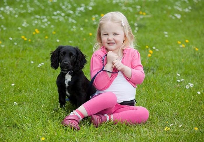 Щенок на страже здоровья трехлетней девочки (3 фото)