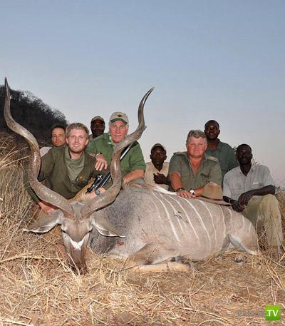 Сафари в Зимбабве - хладнокровное убийство животных (12 фото)