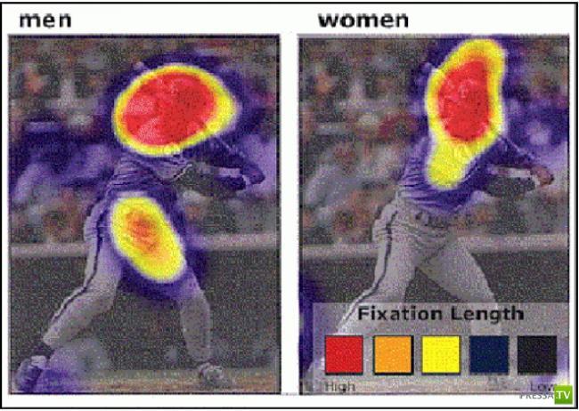 Разное восприятие рекламы мужчинами и женщинами (13 фото)