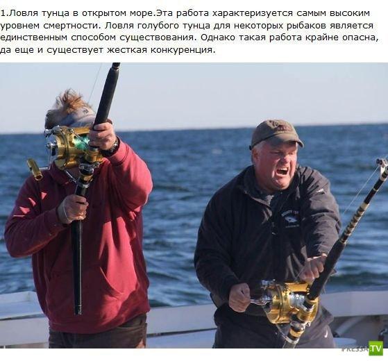 Опасные мужские профессии... (9 фото)