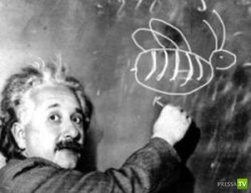 Хитроумная загадка Эйнштейна...