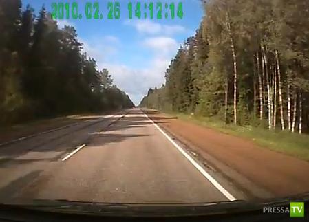 Опять лось на дороге... ДТП по дороге в Финляндию
