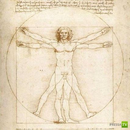 """В человеческом теле есть 5 бесполезных """"деталей""""..."""