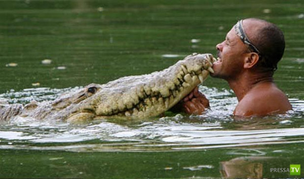 Любимый крокодил (6 фото)