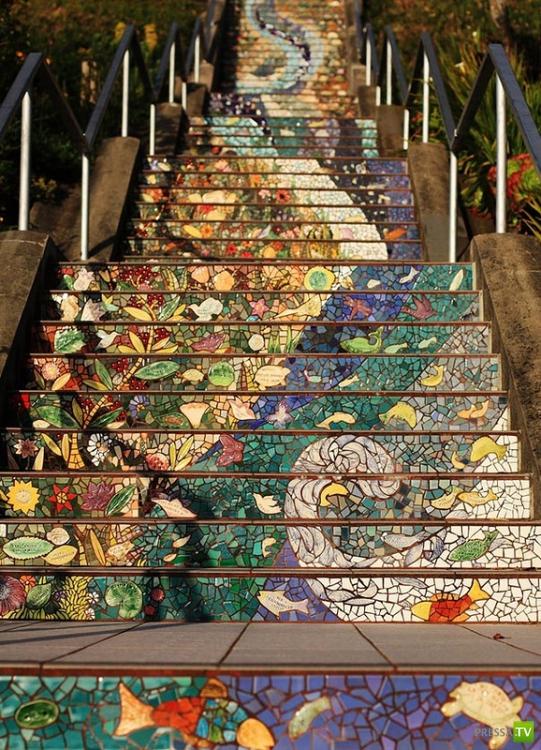 Необычная лестница (9 фото)