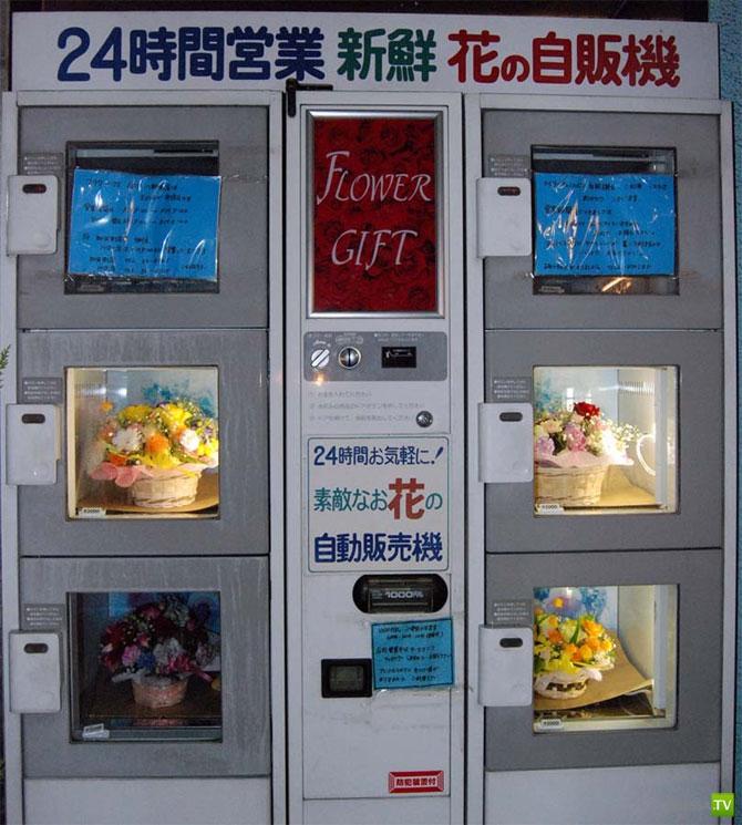 Непривычные торговые автоматы в Японии (35 фото)
